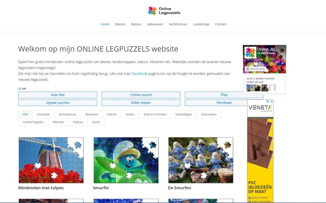 Website Online Legpuzzels